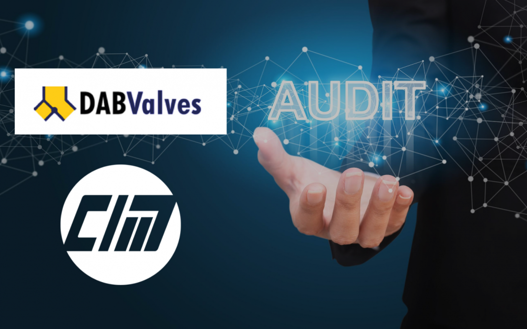 DAB Valves Audit Success